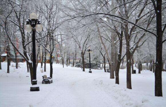 Um longo inverno em Kingston