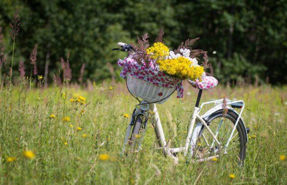 É tempo de pedalar